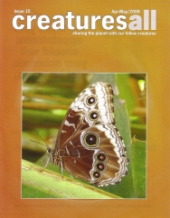 Blue Morpho Butterfly - Front Cover