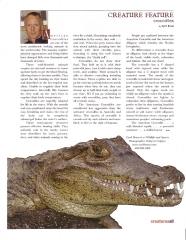 Crocodiles Article