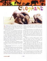Elephant Orphanage Article - Page 1