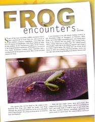 Frog Article - Page 1