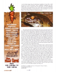 Frog Article - Page 3