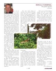 Green Iguana Article
