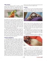 Jaguar Rescue Center Article - Page 2