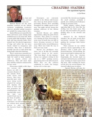 Spotted Hyena Article