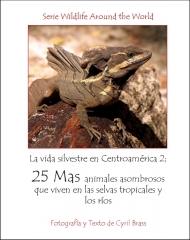 La vida silvestere en Centroamerica 2 - Pagina 1