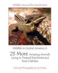 Wildlife In Central America 2 - Front Page