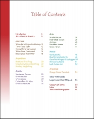 Wildlife in Central America 1 - Table of Contents